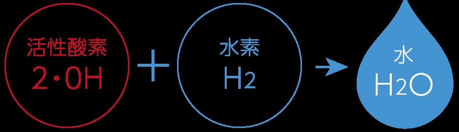 syohin-c04
